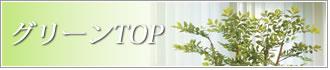 インテリアグリーン 人工観葉植物 光触媒
