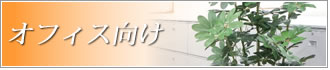 オフィス向けインテリア 人工観葉植物 光触媒